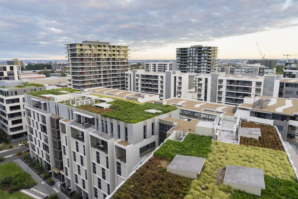 Trend gespot: groen dak