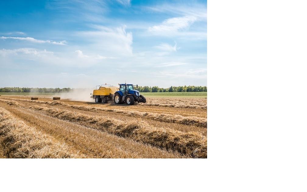 Agrarische grondprijs daalt met 6% in tweede kwartaal